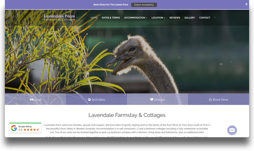 Farmstay Website Design (Online Tourism)
